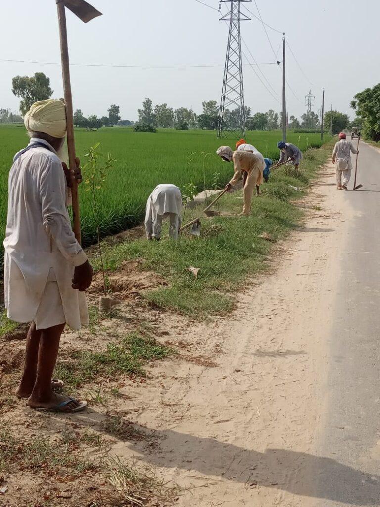Mansa Punjab Hamara Today